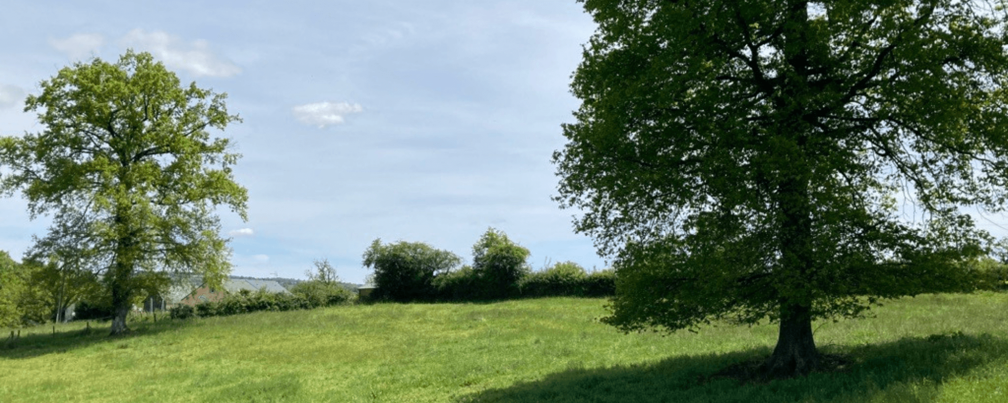 GGL-Rignac-Les-Amifeuillus-4 (1)